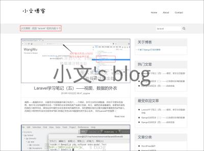 DjangoBlog搜索.png